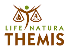 logo_themis